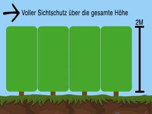 Sichtschutz bei rechteckigen Heckenpflanzen